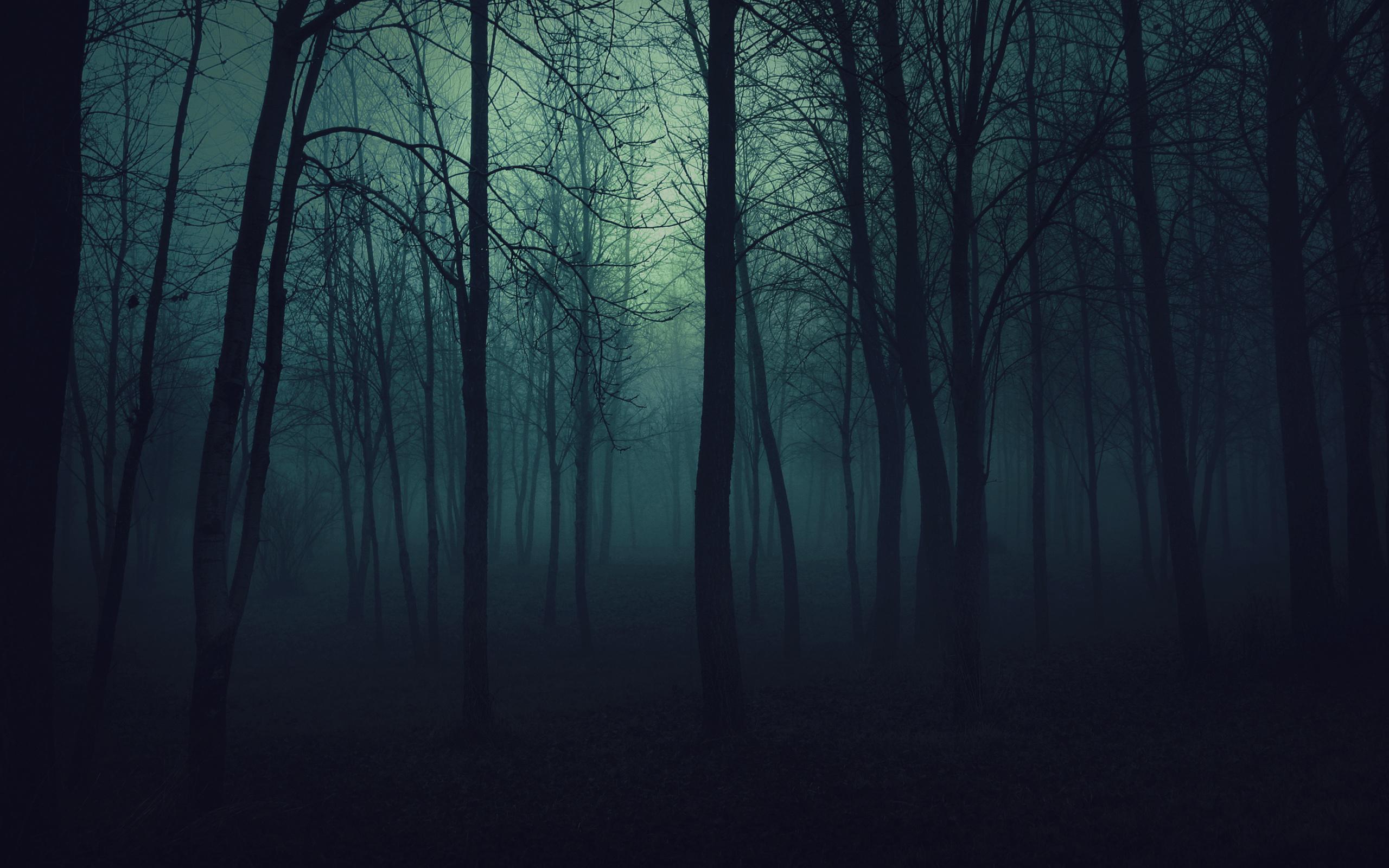 dark_woods
