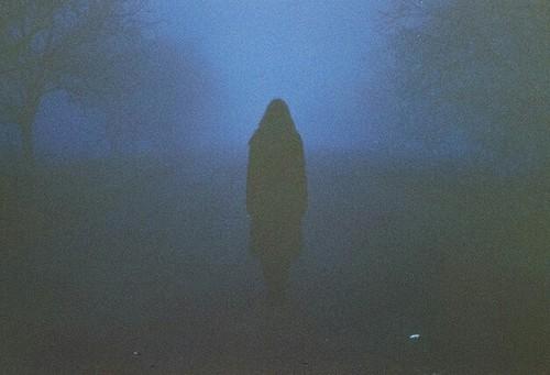 Evergreen www,irule.ro blog