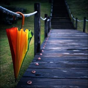 toamna umbrela