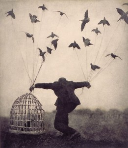 The cage, the birds, the freedom