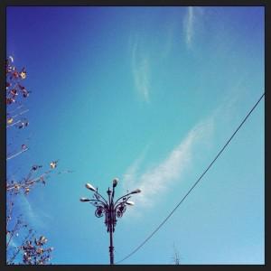 rox evergreen andrei irule blog ganduri