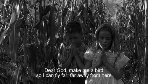 dear god make me a bird