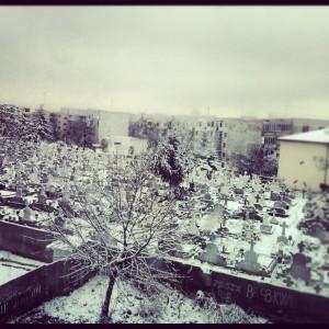 Iarna, roxana andrei, evergreen blog irule